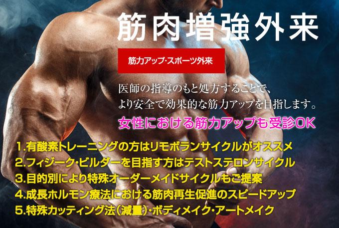 ビルダー プリモボラン 筋肉